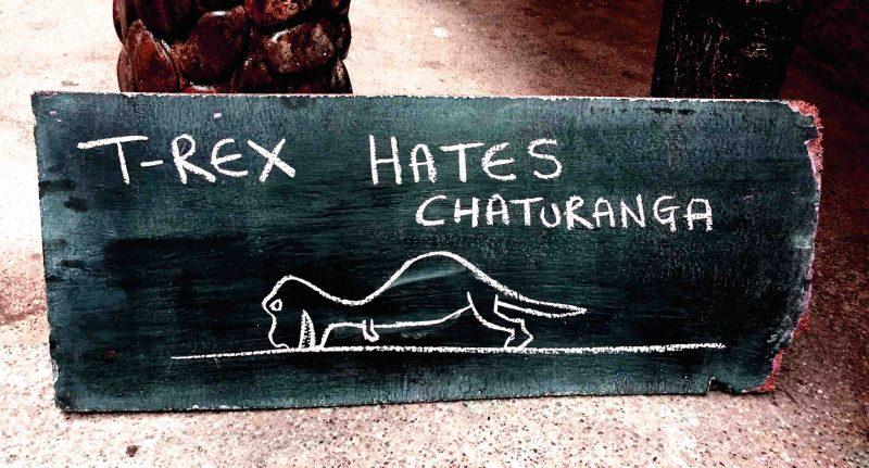 yogamontanita_mikesmantras_chaturanga